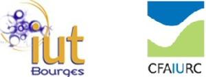 logo_iut-CFA