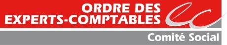 11 01 05 nouveau logo COMITE SOCIAL